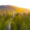 Smoky Mountains 104