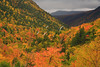 NH CONWAY WHITE MOUNTAINS APP TRAIL CRAWFORD NOTCH OCTJH_MG_7410SSW