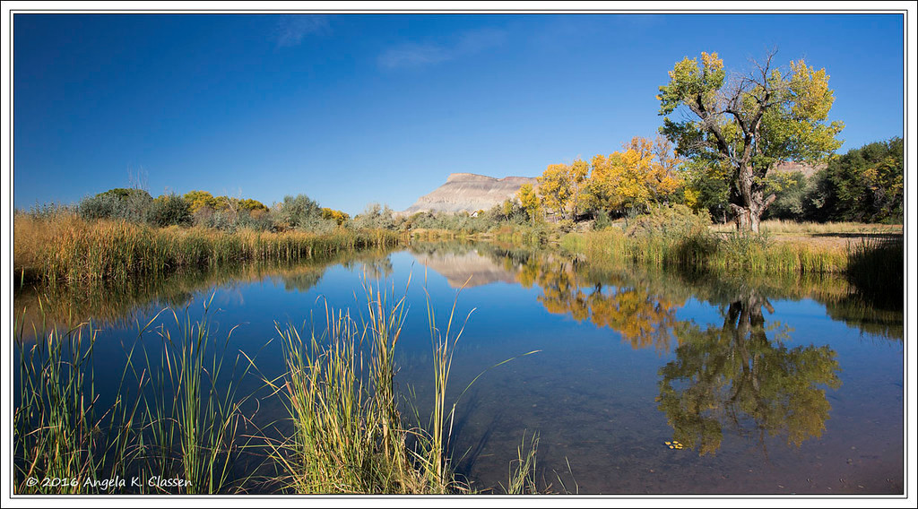 Mt. Garfield reflecting in a pond at River Bend Park, Palisade, Colorado