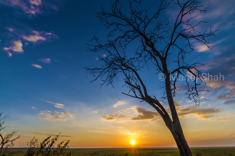 Sunrise in Masai Mara.