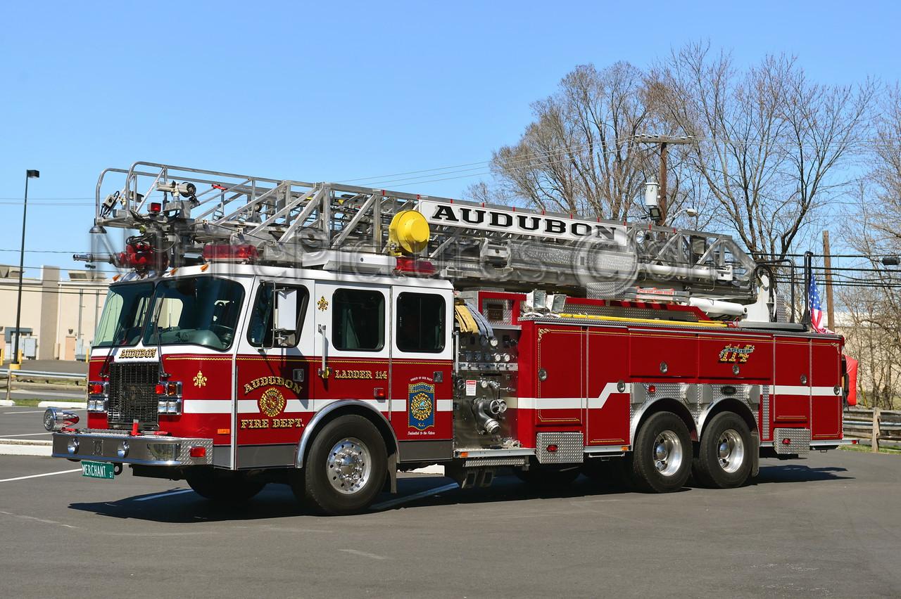 AUDUBON NJ LADDER 114