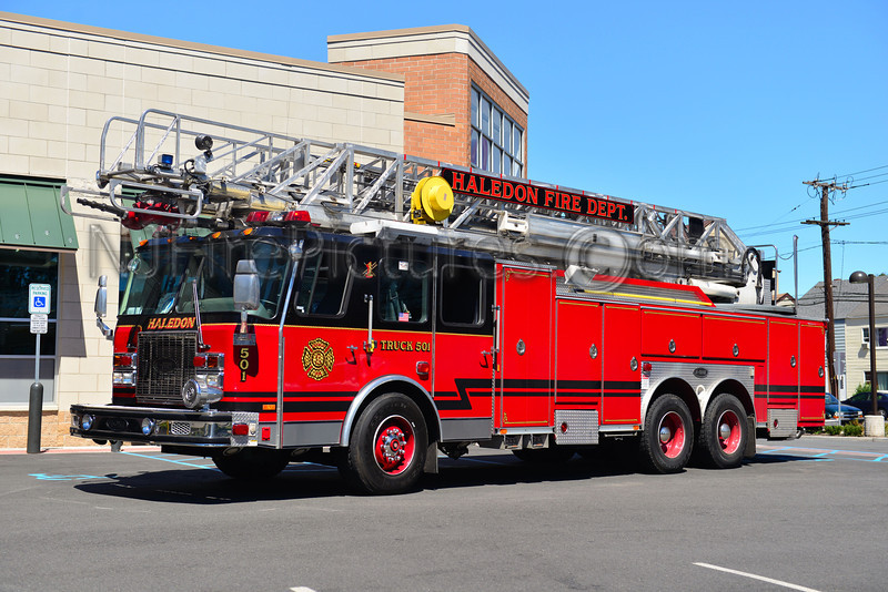HALEDON LADDER 1