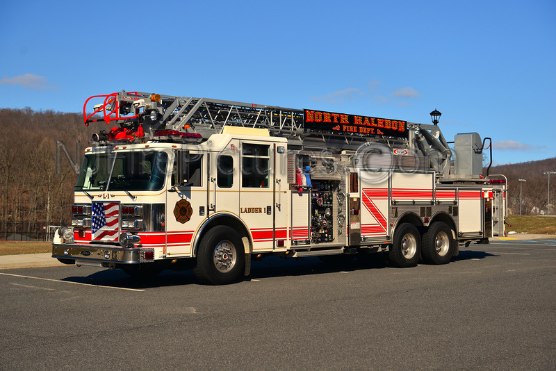 NORTH HALEDON LADDER 1