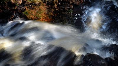 inbetween rivers and berries