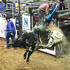 AVI  Honeycutt Rodeo