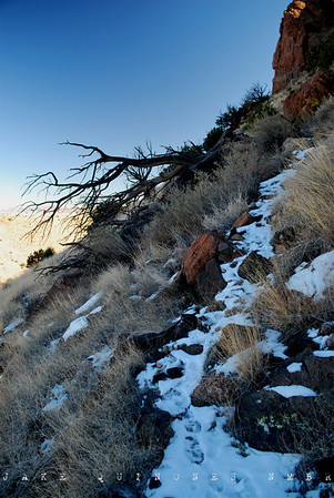 Winter in Southern New Mexico 2010