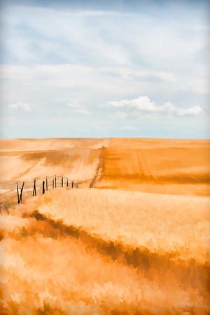 Fields Of Gold 003 | Wall Art Resource