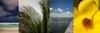 MAT-Beach0110-T1sCvRN6