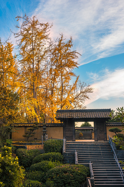 Gate to the Zen Garden.