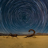 """Composite of the moonlit scorpion and grasshopper with the Fossil Falls star trails.  I've positioned the star trails center on Polaris to """"keep it real""""."""