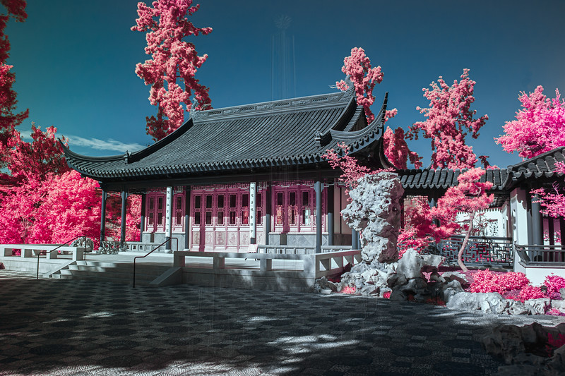 Flowery Brush Library in infrared.
