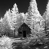 Tom Vincent's cabin in black and white traditional infrared.