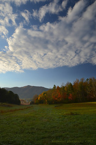 Meadow In Cades Cove