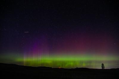 aurora's borealis