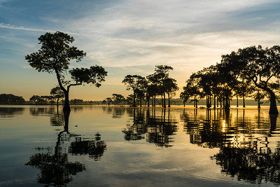 sunrise, Miller Lake, Louisiana