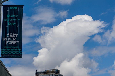 SUGAR SCULPTURE AT THE DOMINO SUGAR FACTORY IN WILLIAMSBURG - 24 MAY 2014