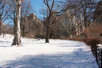 CENTRAL PARK AFTER SNOW - 26 JAN 2014