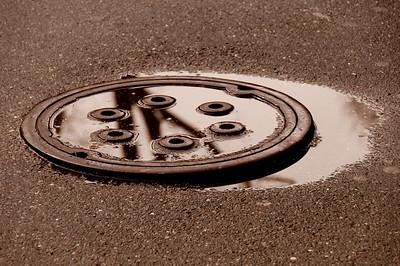 CENTRAL PARK... AGAIN... 03 MAR 2012