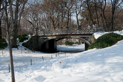 CENTRAL PARK WITH SNOW - 01 JAN 2011