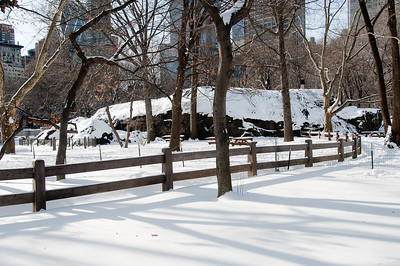 CENTRAL PARK WITH SNOW - December 20, 2009