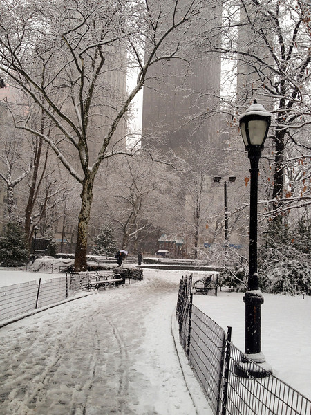 SNOW IN MADISON SQUARE PARK - 03 FEB 2014