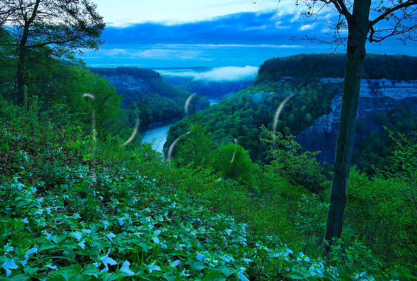 NY CASTILE LETCHWORTH STATE PARK GENESEE RIVER GORGE TRAIL GREAT BEND OVERLOOK AREA PREDAWN MAYAG_MG_6183qbMMW