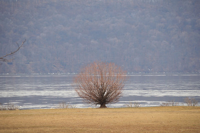 CROTON POINT PARK - January 26, 2008