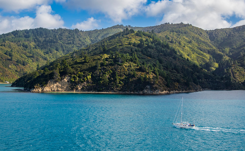 On the morning of saturday April 30, 2016, Interislander ferry Kaitaki is sailing the waters of the Pacific from Wellington to Picton, New Zealand as it passes a small sailboat to port. (© Erica Jacques 2016)