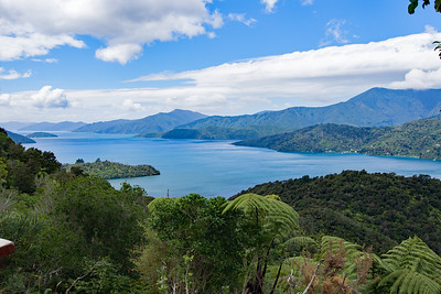Queen Charlotte Track, Picton