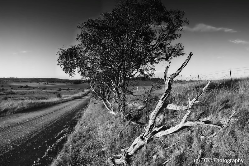 Lambs Lane, Southern Tablelands