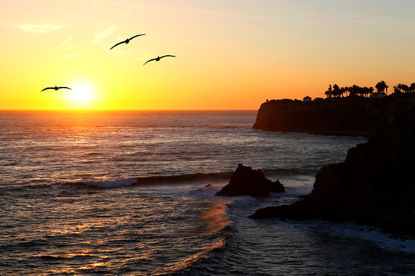 Pt. Vicente sunset with pelicans, April 02, 2012. Palos Verdes Peninsula, CA.