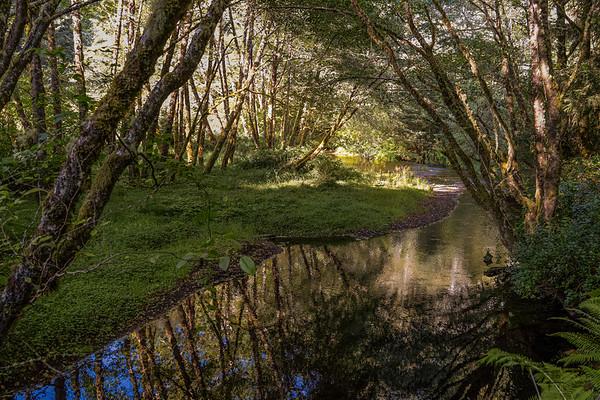 Cape Creek