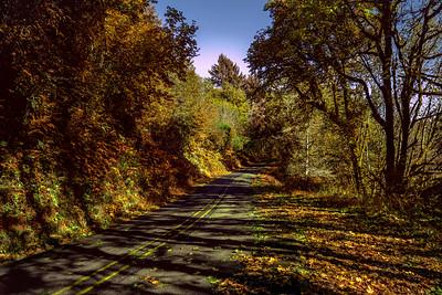 A Road Taken