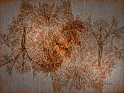 Fall colors by proxy -textured