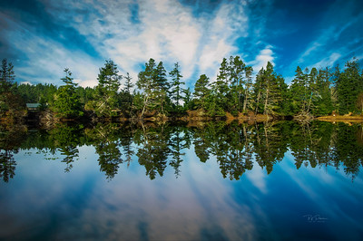 Mirrored Sky