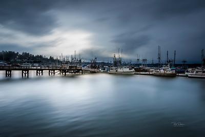 Soft Bay Morning