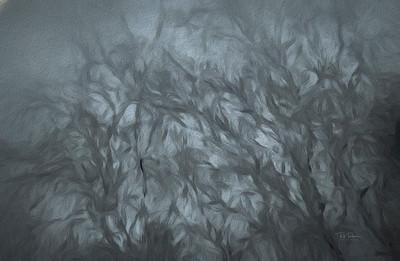Painted misty walk