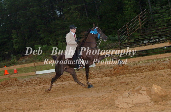CLASS 10 WALKING AMATEUR  SPECIALTY 50 & OVER
