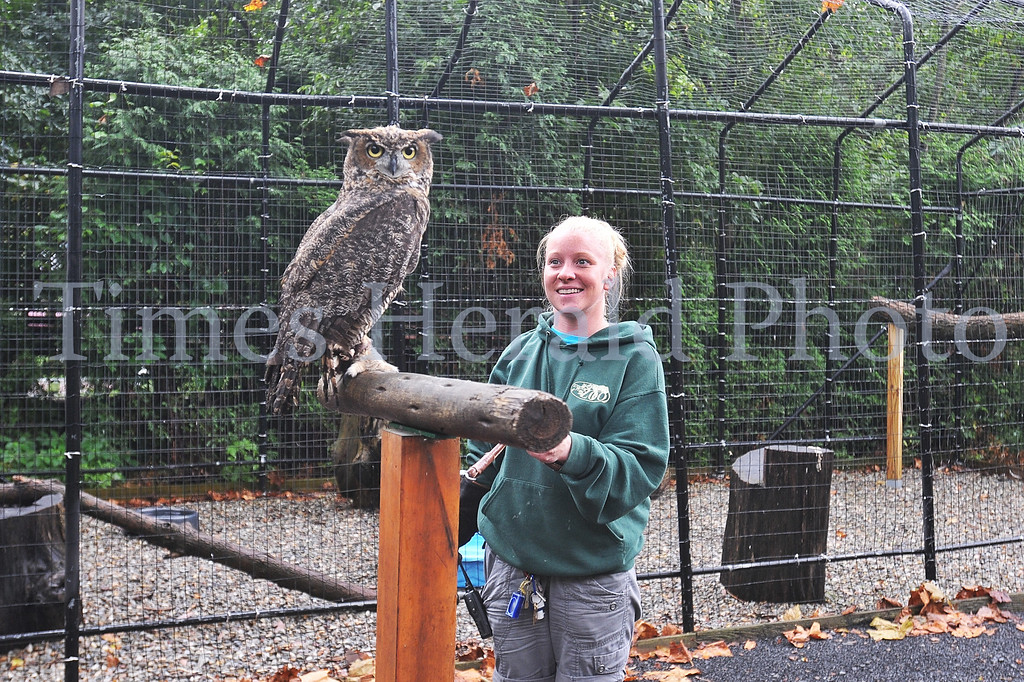 . Elizabeth Yerger, a zoo educator from the Elmwood Park Zoo introduces Stella, a Great Horned Owl who is the Temple Owl\'s new mascot.  Wednesday, August 28, 2013.  Photo by Adrianna Hoff/Times Herald Staff.
