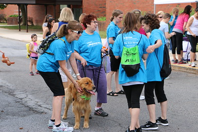 Participants meet at Norristown Area High School to kick off the Einstein Medical Center Montgomery's Walk & 5K Run Through the Park with music and refreshments before walking across the street to Norristown Farm Park Saturday, May 30, 2015. Photos for The Times Herald by Alexis Primavera