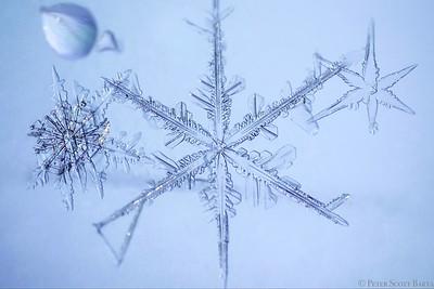 2016 snowflake d