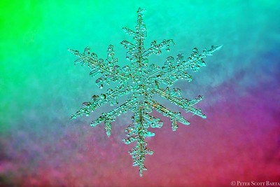 2016 snowflake b
