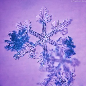 2016 snowflake c