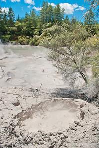 Wai-o-tapu začíná pozvolna - ještě zdarma přístupným bahenním jezírkem.