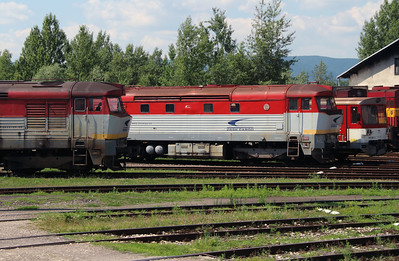 751 132 at Trencianska Tepla Depot on 23rd June 2016