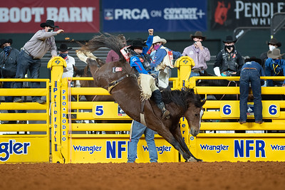 2020NFR_R07_BB_Jake Brown_TopEgyptian_Stangle-2467