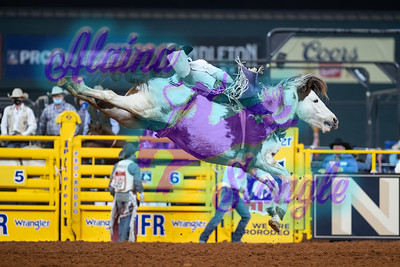 2020NFR_R10_BB_Cole Reiner_NewScarlet_Stangle-7720