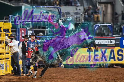 2020NFR_R10_BR_Dustin Boquet_Meeko_Stangle-8972