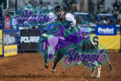 2020NFR_R10_BR_Clayton Sellars_HotFlash_Stangle-9017