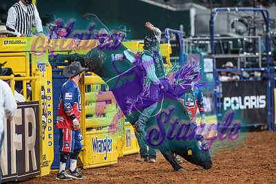 2020NFR_R10_BR_Colten Fritzlan_BrahmaBootsChrome_Stangle-9176